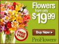 "ProFlowers.com - Promo code ""solid"""