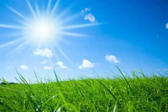 Sunshine.Grass_.Email_.EmailAptitude.Skymosity